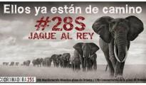 28S Jaque al rey