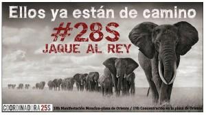 28S-Elefantes