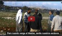 """(Vídeo) Colono de Israel usurpando tierras: """"Pronto vendrá el Mesías y todos vosotros seréis nuestros esclavos, si te portas bien"""""""
