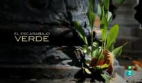 TVE_El_escarabajo_verde
